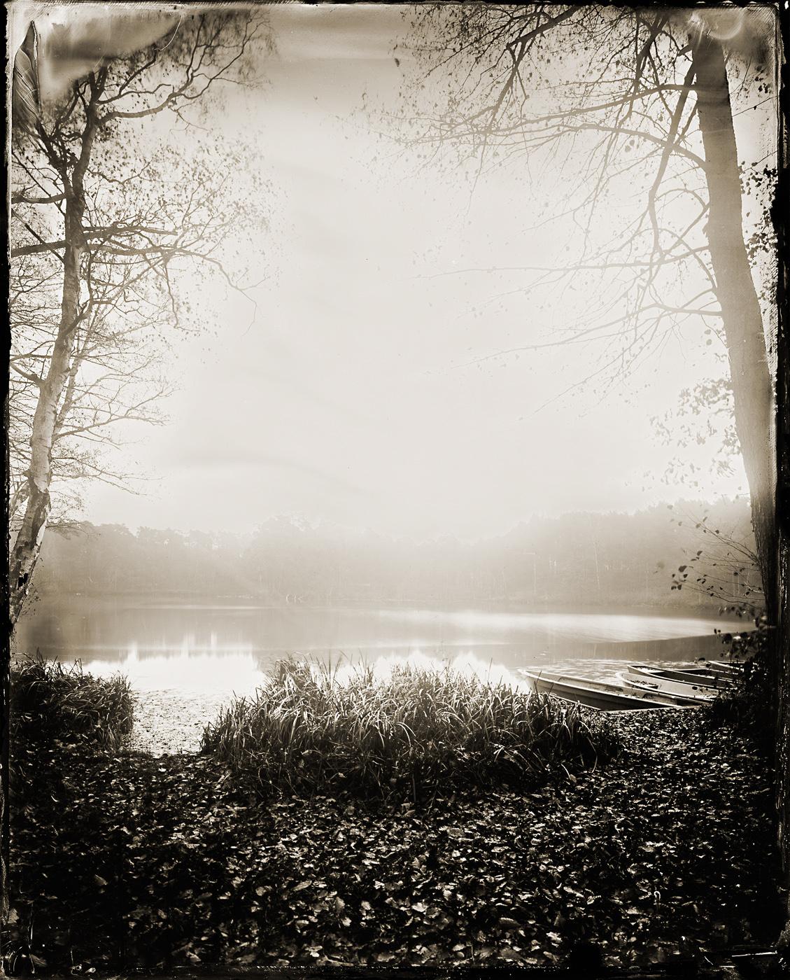 Quiet Lakeside