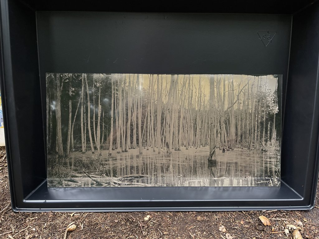 Ultra large format ambrotypes
